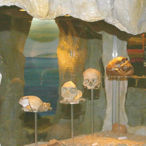Gibraltar Museum