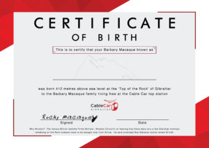 Cablecarbirthcertificate2018 Blank